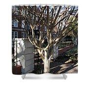 Atlanta Tree Shower Curtain