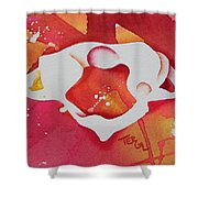 Atlas S To I View Shower Curtain