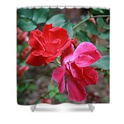 Attraction Shower Curtain