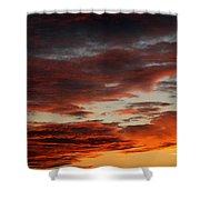 Audubon Sunset Light Shower Curtain