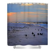 August Beach Morning With The Sea Gulls Shower Curtain