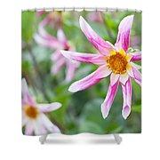 August Flower Gardens Shower Curtain