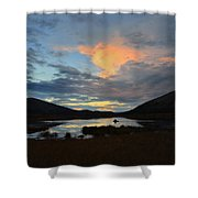 August Moose 2 Shower Curtain