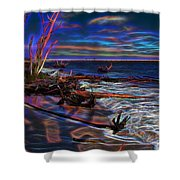 Aurora Borealis Over Florida Shower Curtain