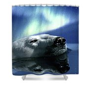 Aurora Dreaming Shower Curtain