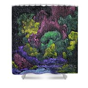 Aurora Reflection Shower Curtain