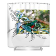 Australian King Parrot Shower Curtain