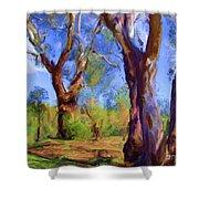 Australian Native Tree 2 Shower Curtain