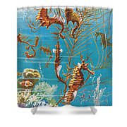 Australian Seahorses Shower Curtain