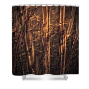 Autummn's Promise 13 Shower Curtain
