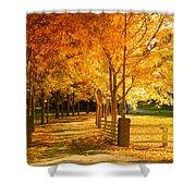 Autumn Alley Shower Curtain