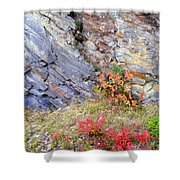 Autumn And Rocks Shower Curtain