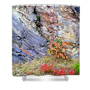 Autumn And Rocks Vertical Shower Curtain