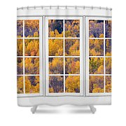 Autumn Aspen Trees White Picture Window View Shower Curtain
