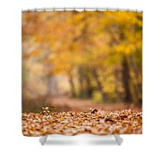 Autumn At Great Falls Shower Curtain