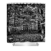 Autumn At Mccauley Mountain IIi Shower Curtain