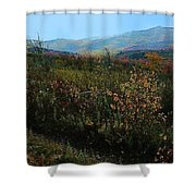 Autumn At Mt Rogers Shower Curtain