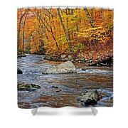 Autumn At The Black River Shower Curtain