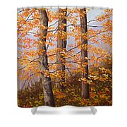 Autumn At Tishomingo State Park Shower Curtain