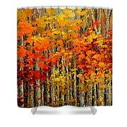 Autumn Banners Shower Curtain
