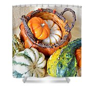 Autumn Basketful Shower Curtain