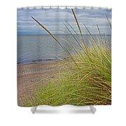 Autumn Beach Grasses Shower Curtain