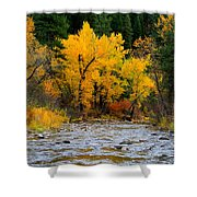 Autumn Beauty In Boise County Shower Curtain