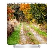 Autumn Beauty On Rural Dirt Road Shower Curtain