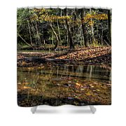 Autumn Beauty Scene Shower Curtain
