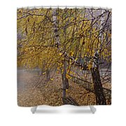 Autumn Bench Shower Curtain