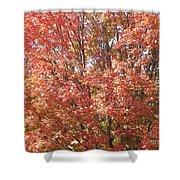 Autumn Blaze Shower Curtain