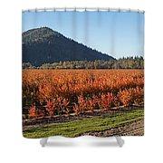 Autumn Blueberry Panorama Shower Curtain