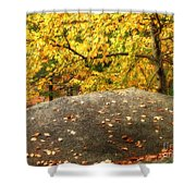 Autumn Boulder And Leaves Shower Curtain