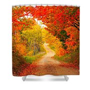 Autumn Cameo Road Shower Curtain by Terri Gostola
