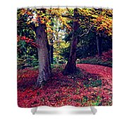 Autumn Carpet In The Enchanted Wood Shower Curtain