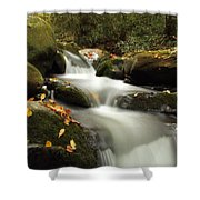 Autumn Cascades In Tennessee Shower Curtain