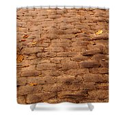 Autumn Cobble Stone Road II Shower Curtain