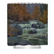 Autumn Color Blewitt Pass Shower Curtain