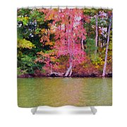 Autumn Color In Norfolk Botanical Garden 1 Shower Curtain