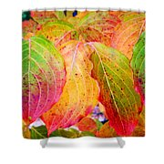 Autumn Colored Leaves Shower Curtain