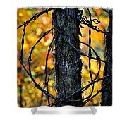 Autumn Colors 1 Shower Curtain