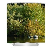 Autumn Colors 1 Shower Curtain
