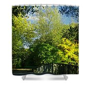 Autumn Colors 4 Shower Curtain