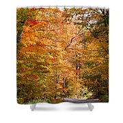 Autumn Colors - Colorful Fall Leaves Wisconsin IIi Shower Curtain