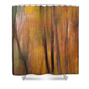 Autumn Colors Iv Shower Curtain