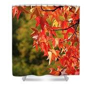 Autumn Cornered Shower Curtain