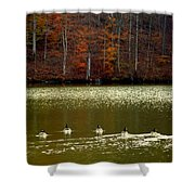Autumn Cove Shower Curtain by Karen Wiles