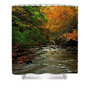 Autumn Creek Shower Curtain