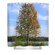 Autumn Cypress Tree Shower Curtain