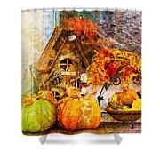 Autumn Display - Pumpkins On A Porch Shower Curtain
